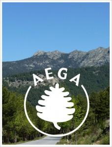 que-es-aega-228x300